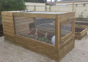 Movable chooks house for garden beds