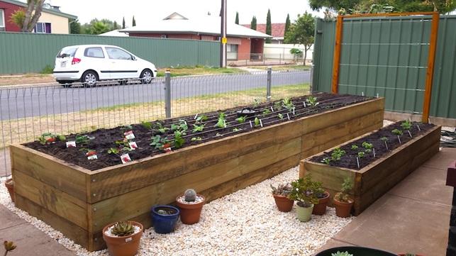 Vital Veggies Adelaide Raised Garden Portfolios