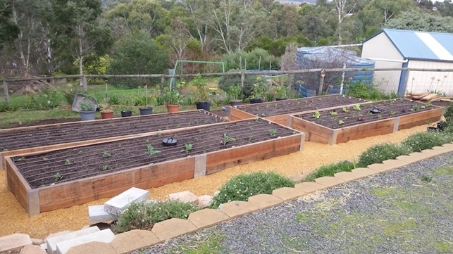 Raised Bed vegetable garden installation in Mount Barker Adelaide South Australia