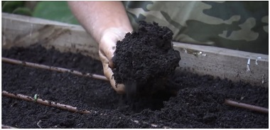Best soil for vegetable gardens in Adelaide