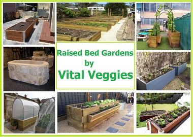 Installation of Raised Bed Vegetable Garden in Adelaide